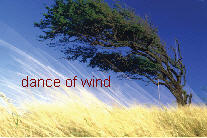 Dance With Wind
