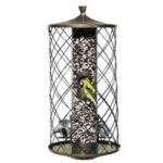 Choose Proper Birdfeeders Online
